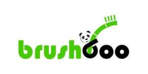 logo brushboo